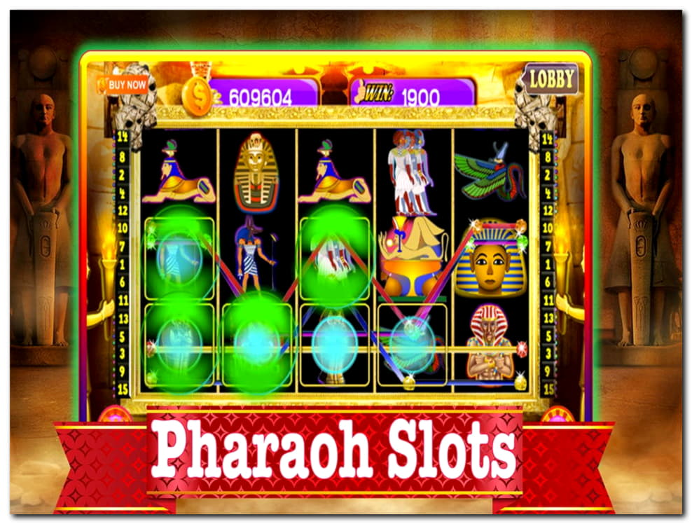 44 Free Spins right now at Rizk Casino